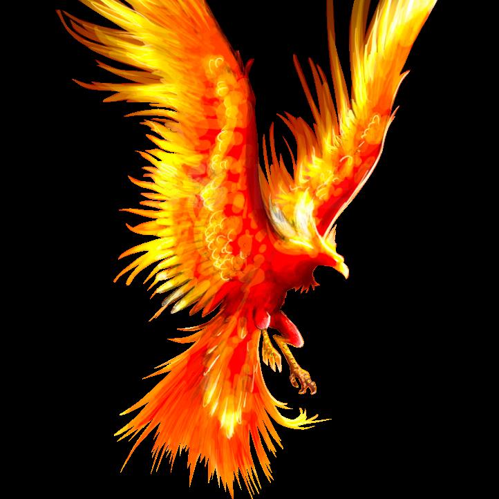 FENIX EASY logo