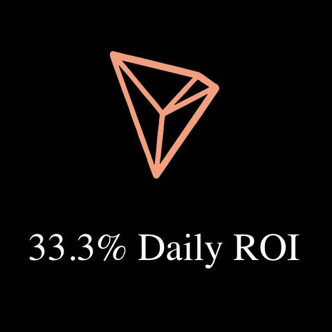 333ROI logo