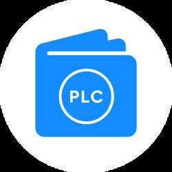 PlayChain Wallet logo