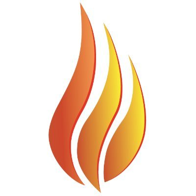 The Burn Token logo