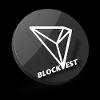 Blockvest logo