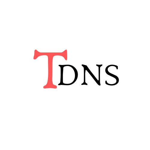 TDNS logo