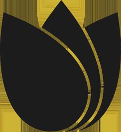 Ontology DEX logo
