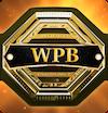 Pantograph Belt logo