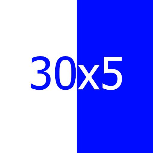 TRON 30x5 logo
