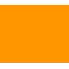 TronHawk logo