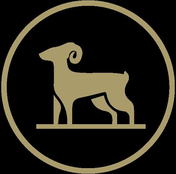 ARIES FINANCIAL logo