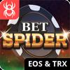 BetSpider logo