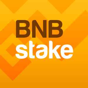 Stake BNB and Earn Daily ROI (5-8%) logo