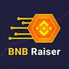 BNB Raiser logo