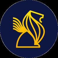 SuperLion.finance logo