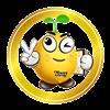 ysoy chain farm logo