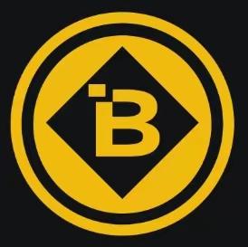 BNBmiracle logo