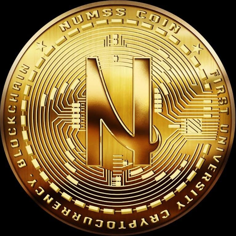 NUMSS-COIN ( NMS ) logo